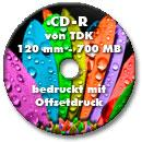 Offsetdruck